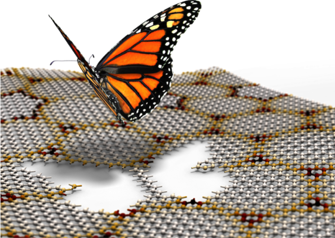 First direct proof of Hofstadter Butterfly Fractal observed in moiré superlattic