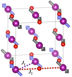 Magnetic structure of manganese oxide (MnO)