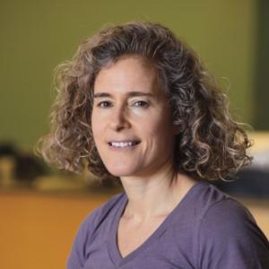 Portrait of Prof. Keren Bergman